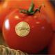 Alimentos orgánicos, ¿qué son?