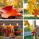 Deco: Cómo conservar hojas otoñales para usar en decoración