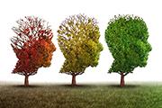 Cómo cuidar nuestra mente ante el caos de la vida diaria